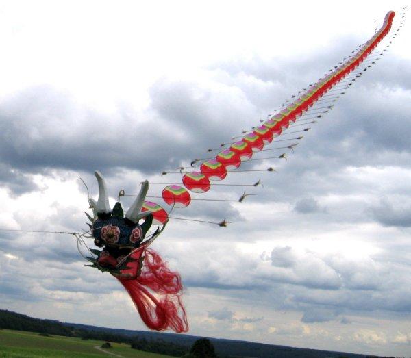centipeden drachen centipede kites. Black Bedroom Furniture Sets. Home Design Ideas